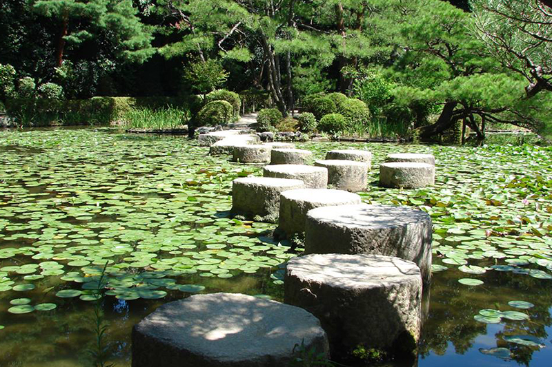 Stepping Stones on Pond